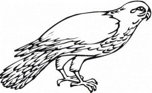 falcon-6-coloring-page